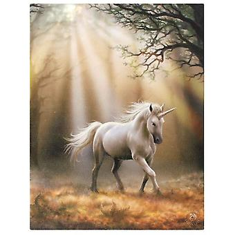 Anne Stokes Glimpse Unicorn Canvas