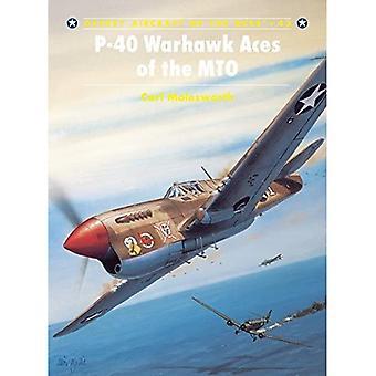 P-40 Warhawk Asse des MTO