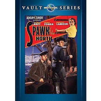 Prole da importação EUA do Norte [DVD]