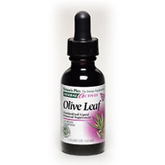 Naturezas Plus líquido OLIVE LEAF 125 MG 1 OZ