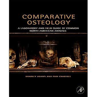 Vergleichenden Osteologie