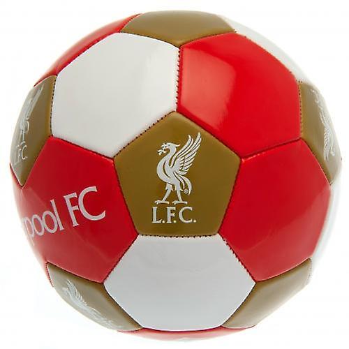 Liverpool fotball størrelse 3