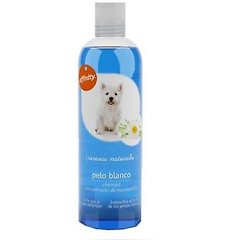 Affinity Shampoo for dogs with fur White (Dogs , Grooming & Wellbeing , Shampoos)