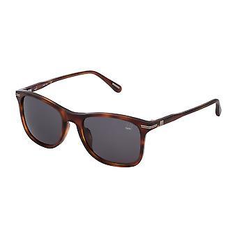 Dunhill SDH131 0710 Shiny Brown Havana/Smoke Sunglasses