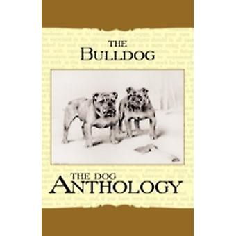 The Bulldog  A Dog Anthology A Vintage Dog Books Breed Classic by Various