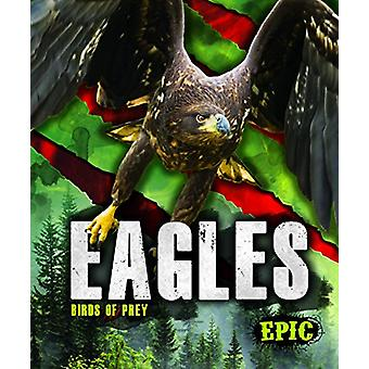 Eagles by Nathan Sommer - 9781626178786 Book
