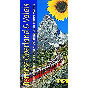 Bernese Oberland and Valais - 3 car tours - 6 train tours - 75 long an