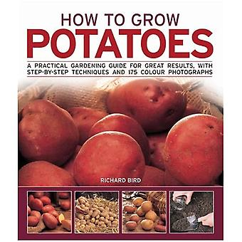 How to Grow Potatoes: A Practical Gardening Guide for Great Results with Step-by-step Techniques (How to Grow)