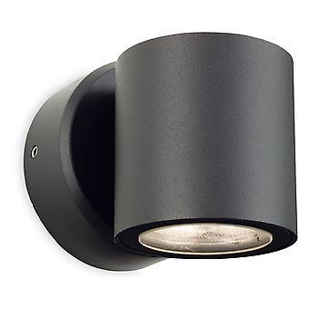 LED Single Outdoor Wall Light Grafiet IP54