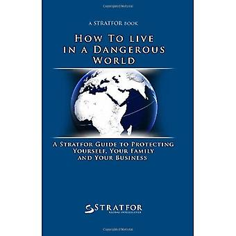 How to Live in a Dangerous World: A Stratfor Guide to Protecting Yourself, Your Family and Y...