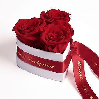 Seni Seviyorum Rosor Heart Box 3 Eternal Roses i Röd Hållbar 3 år
