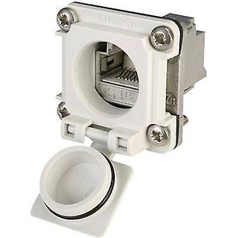 STX V6 RJ45 flens set optie 6 Connector, mount aantal pins: 8P8C J00020A0482 licht grijs Telegärtner J00020A0482 1 PC('s)