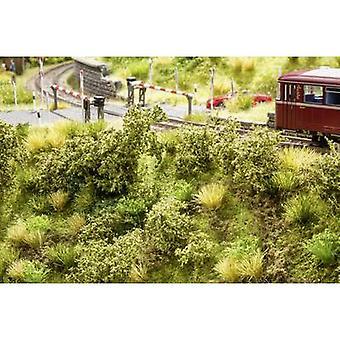 Embankment vegetation NOCH 23102