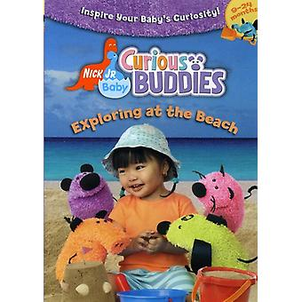 Exploring at the Beach [DVD] USA import