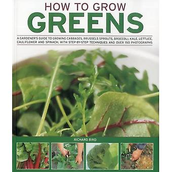 How to Grow Greens: A Gardeners Guide to Growing Cabbages, Brussels Sprouts, Broccoli, Kale, Lettuce, Cauliflower and Spinach, with Step-B