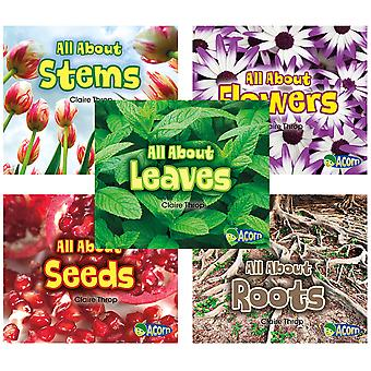 All About Plants Book Set, Set Of 5