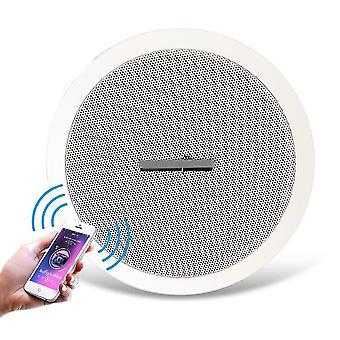 10w Inbyggd Bluetooth-förstärkare - Full Range6'' Dual-cone Dynamic Speaker Diver