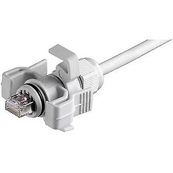 RJ45 liitin asettaa vaihtoehto 6 pistoketta, suoraan nastojen määrä: 8P8C J00026A0150 kynttilä harmaa Telegärtner J00026A0150 1 PCs()