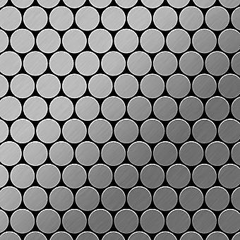 Metal mosaik Rustfrit stål ALLOY Dollar-S-S-MB