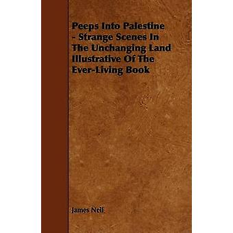 Peeps Into Palestine  Strange Scenes In The Unchanging Land Illustrative Of The EverLiving Book by Neil & James