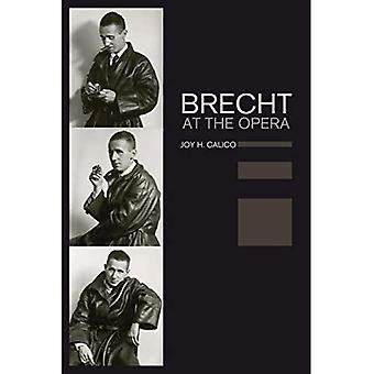 Brecht at the Opera - California Studies in 20Th-Century Music