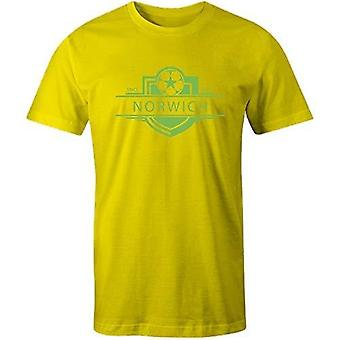 Sporting empire norwich city 1902 established badge kids football t-shirt