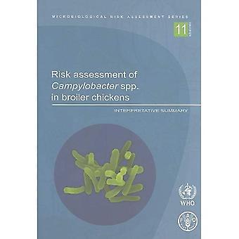 Risico-evaluatie van Campylobacter spp. in vleeskuikens: interpretatieve samenvatting