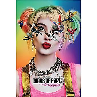 Birds Of Prey Seeing Stars Poster
