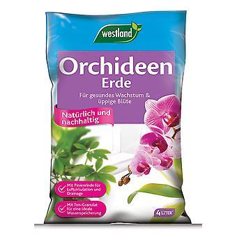 WESTLAND® orkidé jord, 4 liter