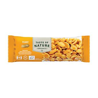 Organic Peanut Bar 1 bar of 40g