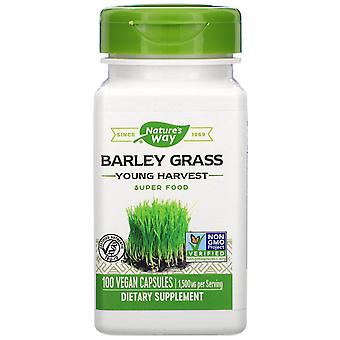 Nature-apos;s Way, Orge Grass, Young Harvest, 1 500 mg, 100 Capsules végétaliennes