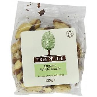 Tree Of Life - Organic Brazil Nuts - Whole 125G X 6