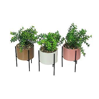 Sarja 3 keinotekoista ruukkusoraa mehevää kasvia keraamisilla istuttajilla ja metallitelineet