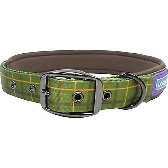 Dog apparel dog co nylon padded collar luxury green check 3/4'' x14-18'' pack of 3
