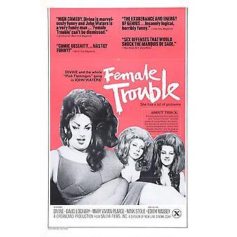 Poster do filme problemas femininos (11 x 17)