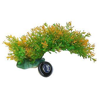 Betta Choice Green & Yellow Bendy Branch