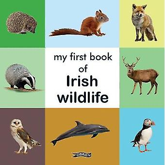 My First Book of Irish Wildlife - 9781788491655 Book