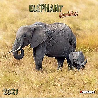 ELEPHANT FAMILIES 2021