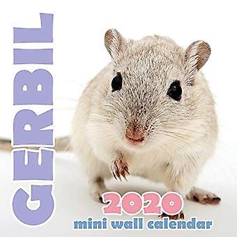 Gerbil 2020 Mini Wall Calendar
