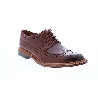 Bostonian Adult Mens No.16 Soft Wing Wingtip & Brogue Oxfords & Lace Ups