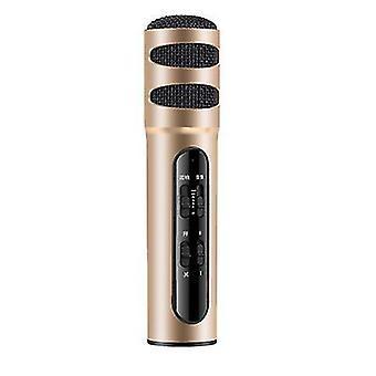 micrófono musical portátil de mano karaoke micrófono altavoz de la máquina para la fiesta de cumpleaños en casa (Oro)