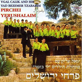 Pirhei Yerushalayim - Songs [CD] USA import