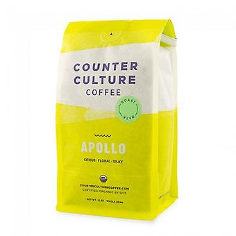Counter Culture Coffee Apollo Whole Bean Coffee