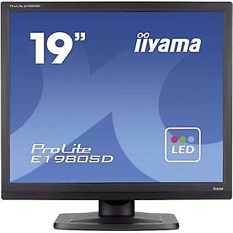 Iiyama E1980SD-B1 LED 48,3 cm (19 Zoll) 1280 x 1024 p SXGA 5 ms DVI, VGA TN LED