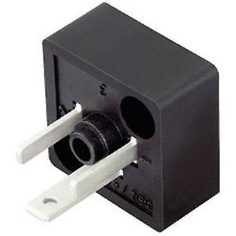 Binder 43-1905-000-03 schwarz Anzahl der Pins: 2 + PE