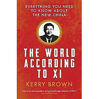 Il mondo secondo Xi