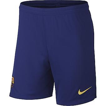 Nike FC Barcelona Breathe Stadyumu AJ5705455 futbol tüm yıl erkek pantolon