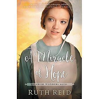 Um milagre de esperança (a série de maravilhas Amish)