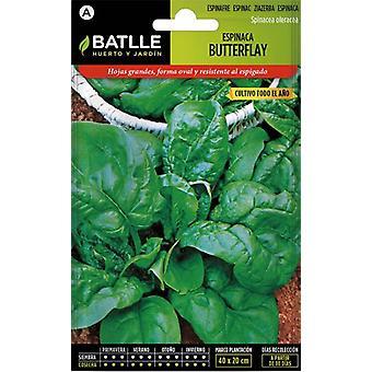 Batlle Butterflay Spinach (Garden , Gardening , Seeds)