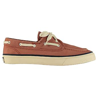 SPERRY Mens Seamate Two Eye Shoes